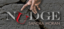 Sunny Reviews Nudge by Sandra Moran